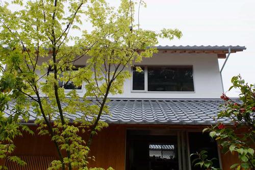 kyoto_shinryoku01